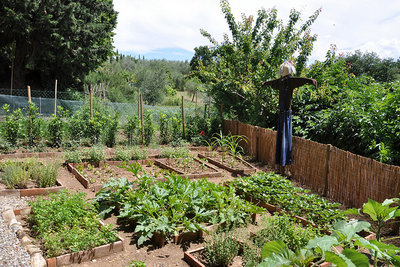 Orto - Vegetable Garden